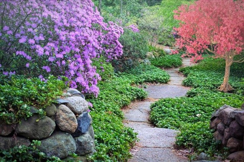 Jak i z czego zrobić ścieżki w ogrodzie?