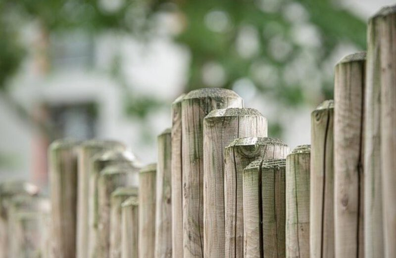 Jak dbać o drewno w ogrodzie?